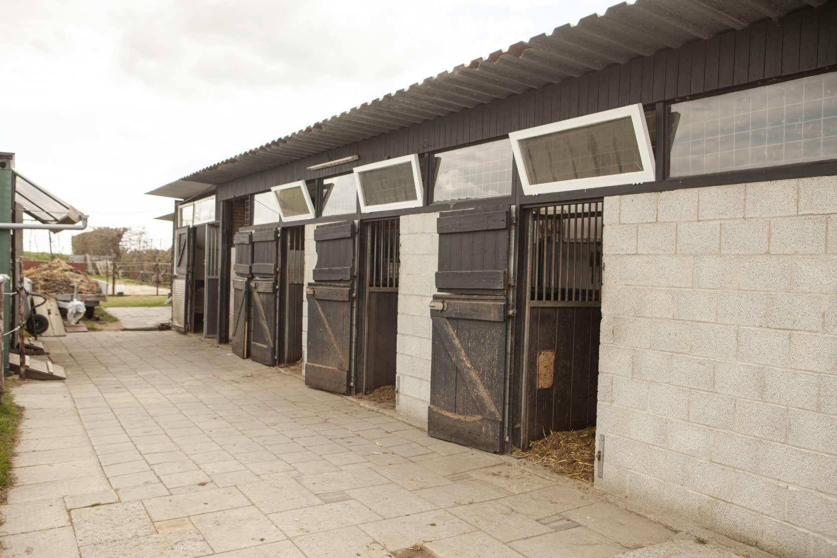 Stal-Schouten-Wemeldinge-Stallen-Paarden