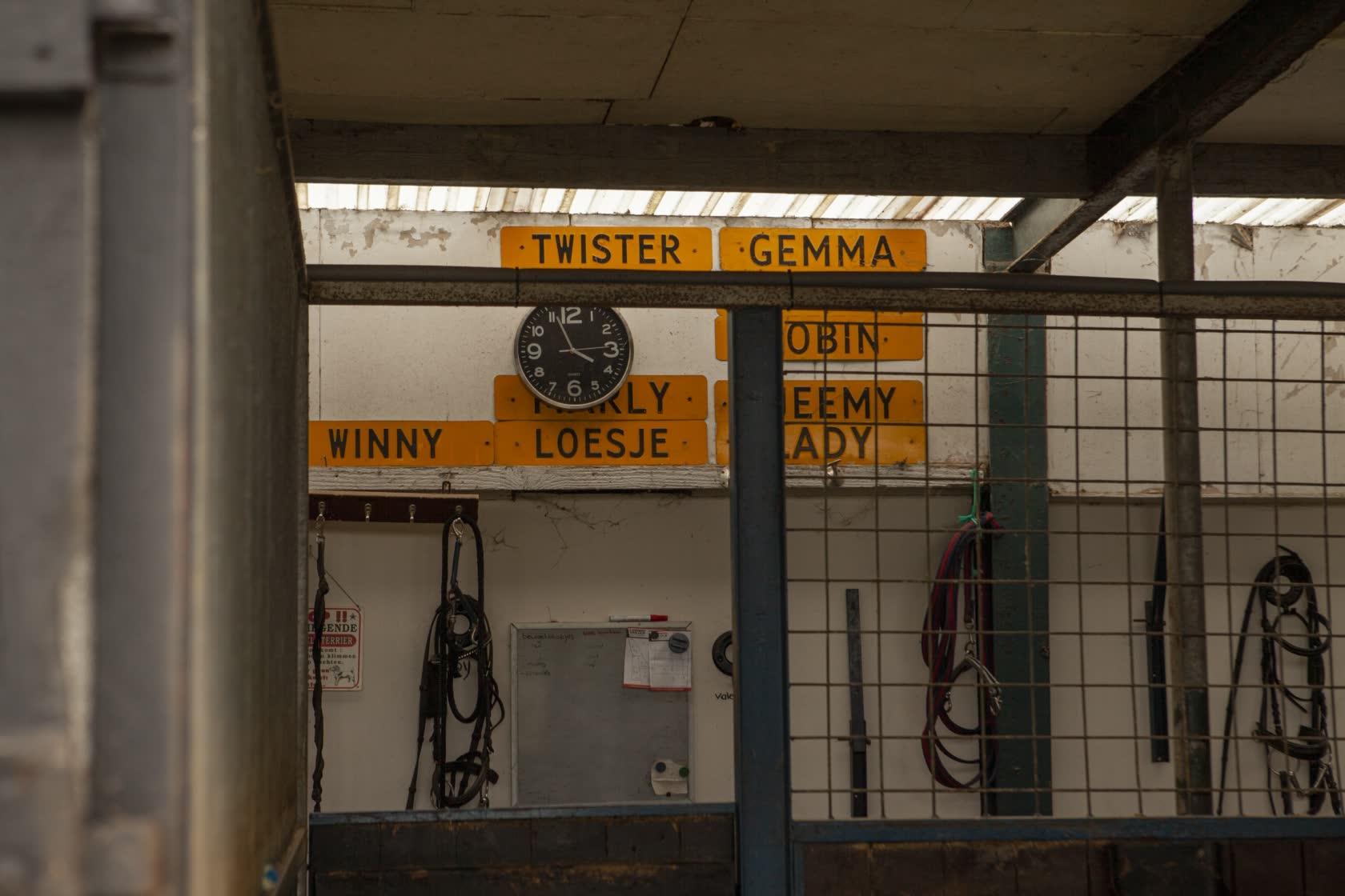 Stal-Schouten-Stallen-Namen-Paarden