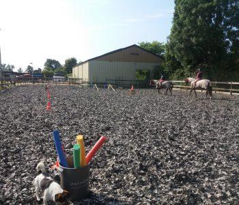 ponykamp-Kinderfeesje-Vieren-Jarig-Stal-Schouten-Wemeldinge