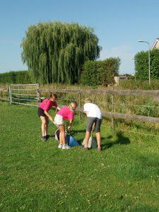 Ponykamp-activiteiten-Stal-Schouten