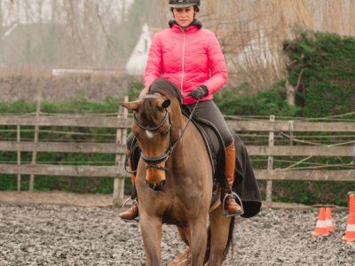 Tienerkamp-Rijlessen-paarden-Stal-Schouten